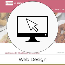 Content Management System Software setup and Web Design